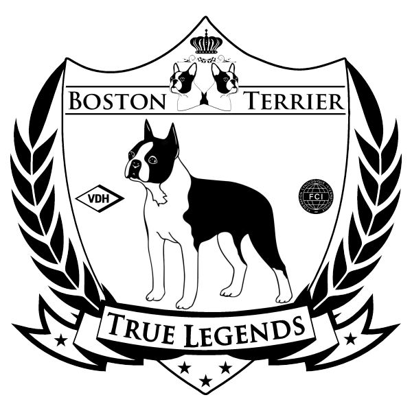 Boston Terrier Logo True Legends